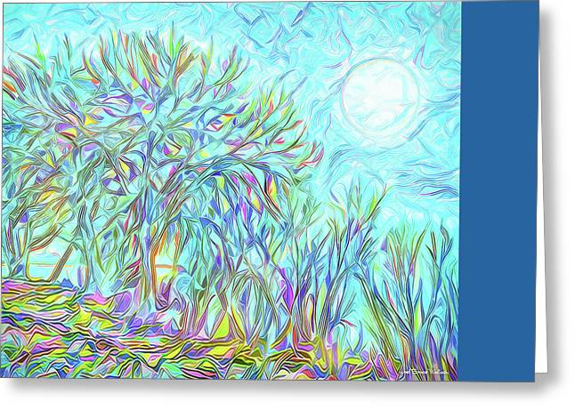 Art Of Vital Greeting Cards - Trees Of The Indigo Moon - Boulder County Colorado Greeting Card by Joel Bruce Wallach