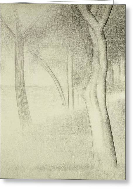 Trees  Study For La Grande Jatte Greeting Card by Georges Pierre Seurat