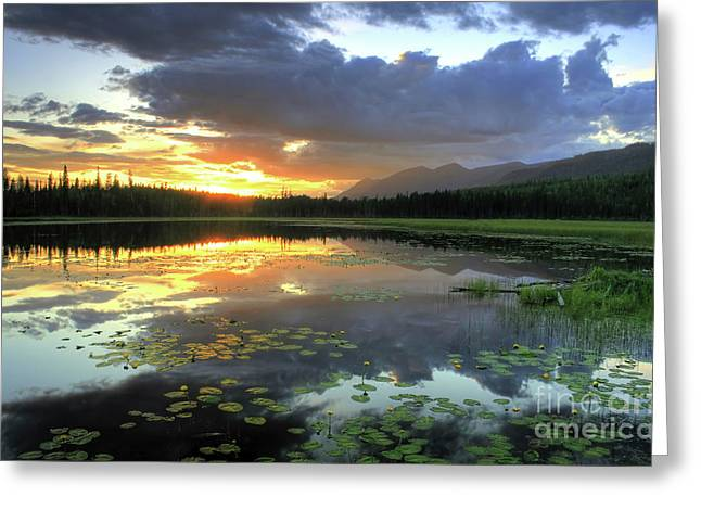 Dave Greeting Cards - Trego Night Greeting Card by Dave Hampton Photography