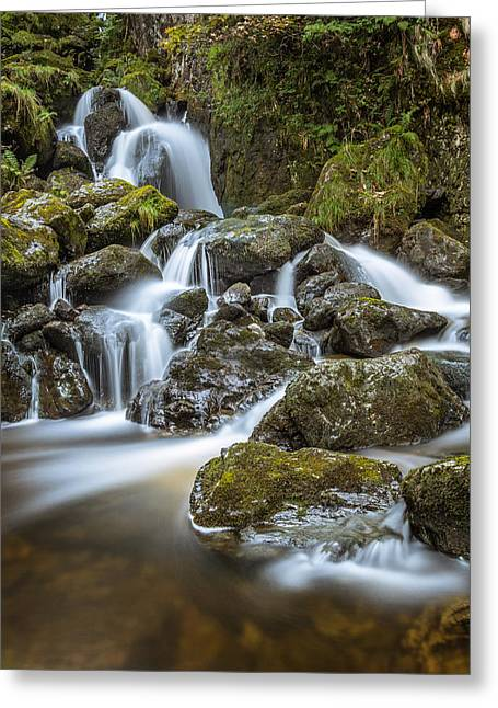 Trickle - Lodore Falls, Keswick, Lake District. Greeting Card by Daniel Kay