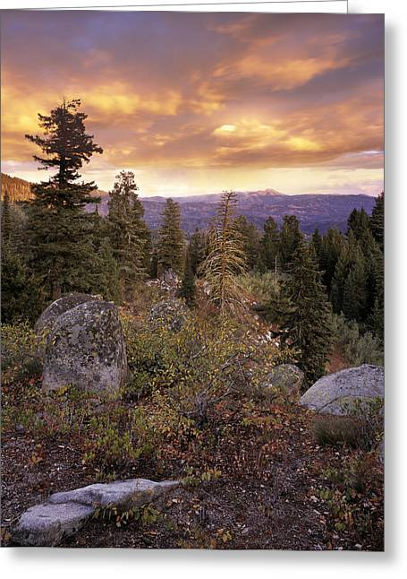 Trinity Greeting Cards - Trinity Mountains Greeting Card by Leland D Howard