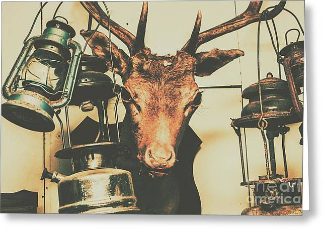 Trophy Horrors Greeting Card by Jorgo Photography - Wall Art Gallery