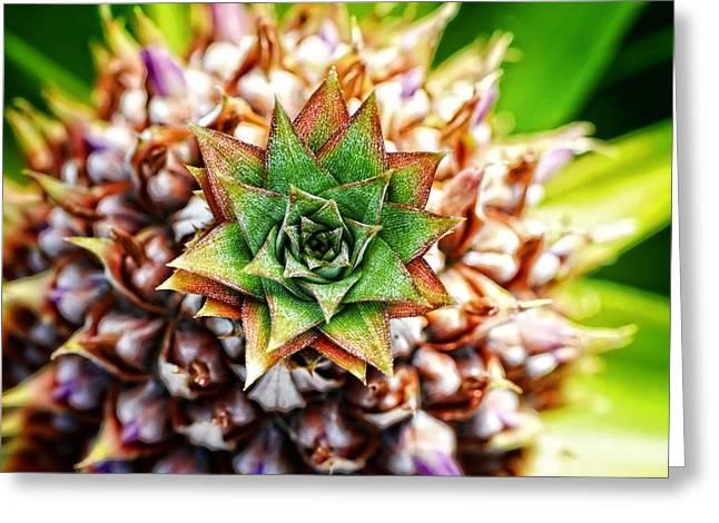 Tropical Art - Pineapple Punch - Sharon Cummings Greeting Card by Sharon Cummings