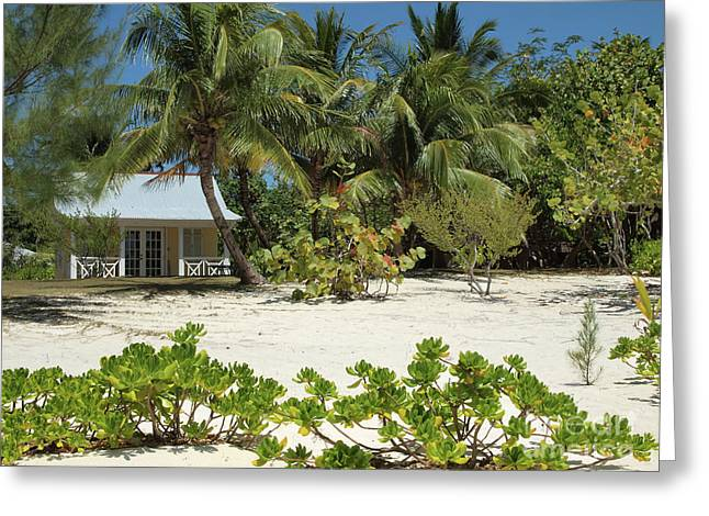 Cayman Houses Greeting Cards - Tropical Beach House Cayman Islands Greeting Card by James Brooker