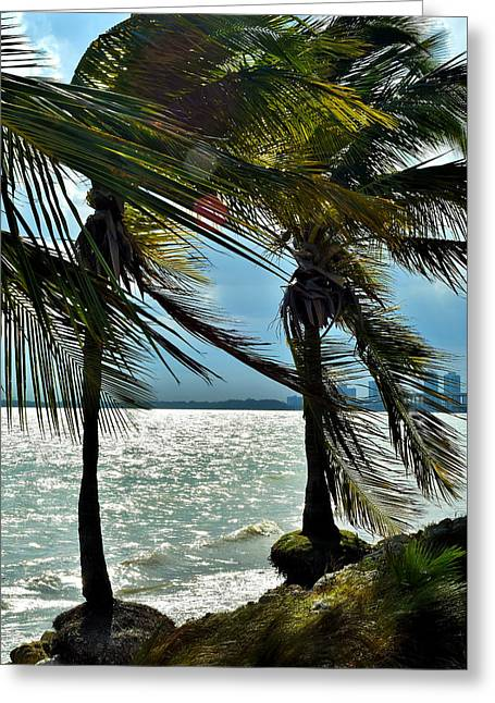 Tropical Breeze Greeting Card by Camille Lopez