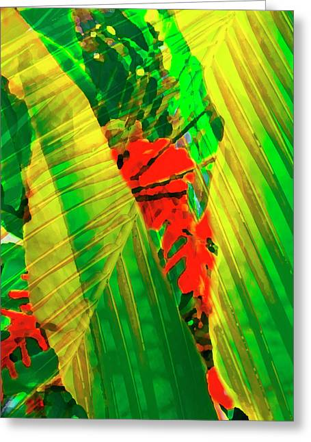 Tropical Plants Greeting Cards - Tropical Fusion Greeting Card by Stephen Anderson