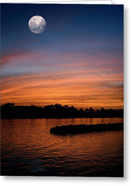 Tropical Moon Greeting Card by Laura Fasulo