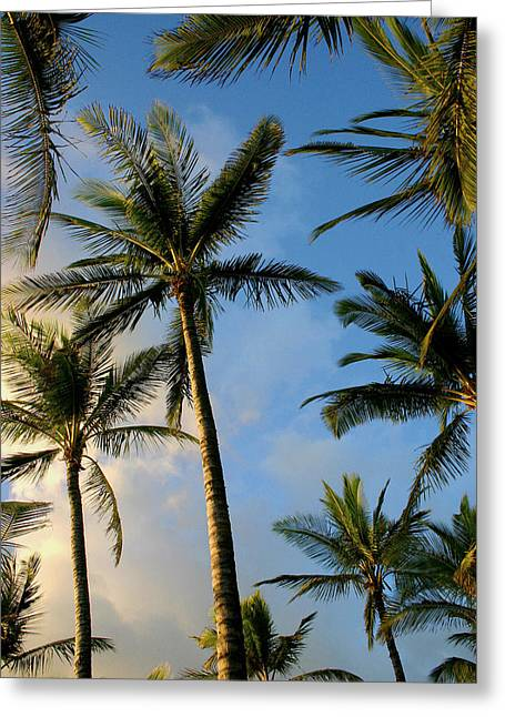 Tropical Palm Trees Of Maui Hawaii Greeting Card by Pierre Leclerc Photography