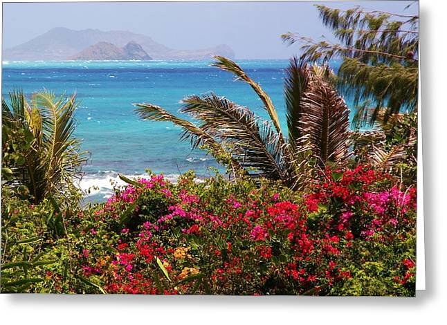 Tropical Island Greeting Cards - Tropical Paradise Greeting Card by Mitch Cat