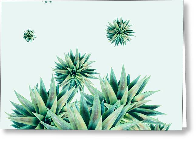 Tropical Stars  Greeting Card by Mark Ashkenazi