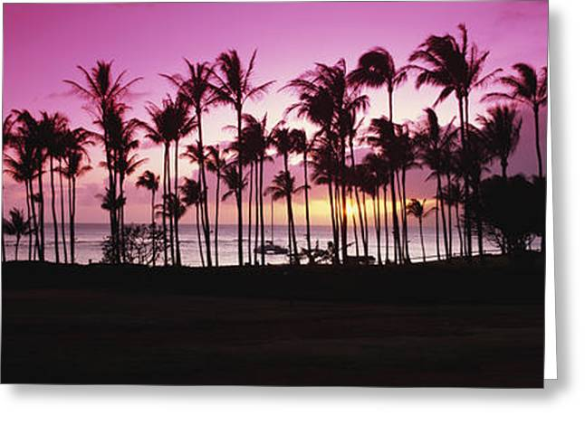 Reflection Of Sun In Clouds Greeting Cards - Tropical Sunset With Magenta Sky Greeting Card by Bill Schildge