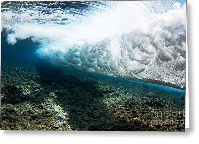 Tropical Wave Curl Greeting Card by Dave Fleetham - Printscapes