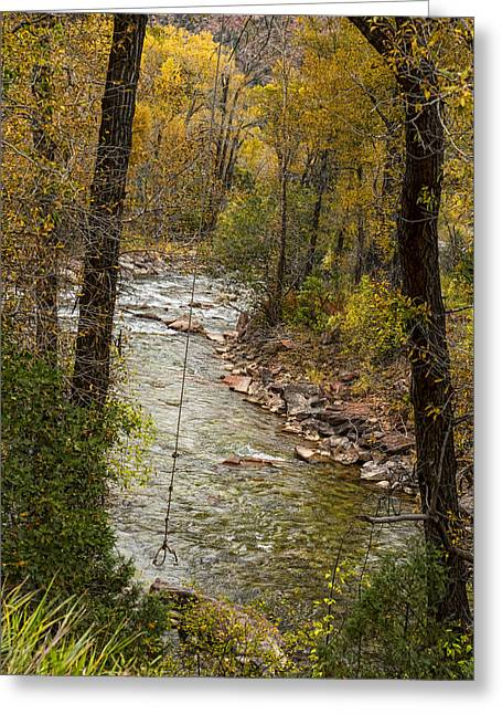 Fishing Creek Greeting Cards - Trout Fishing Stream Crossing Swing Greeting Card by James BO  Insogna