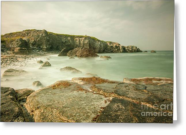 Trow Rocks From Graham Sands Greeting Card by Andy Blakey