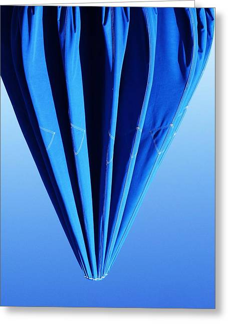 True Blue Too Greeting Card by Anna Villarreal Garbis