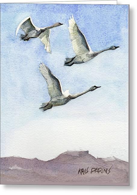 Trumpeter Swan Study Greeting Card by Kris Parins