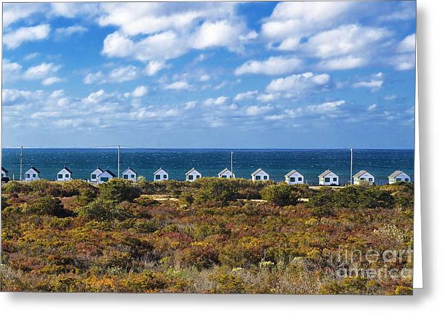 Ocean Front Landscape Greeting Cards - Truro Cottages Greeting Card by John Greim