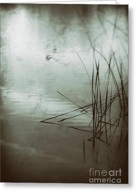 Trust In Dreams Greeting Card by Linda Lees
