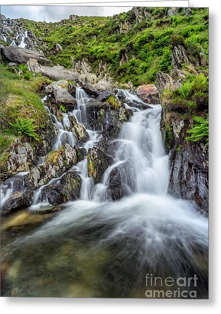 Rapids Greeting Cards - Tryfan Mountain Rapids Greeting Card by Adrian Evans