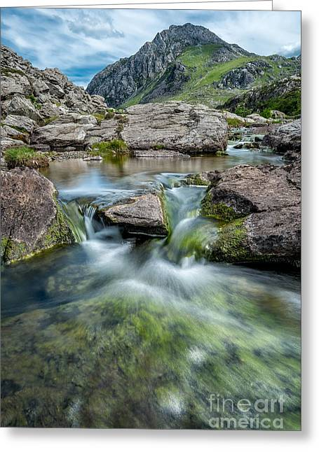 Rapids Greeting Cards - Tryfan Stream Greeting Card by Adrian Evans