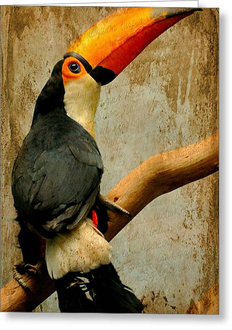 Tucan Do Greeting Card by Diana Angstadt
