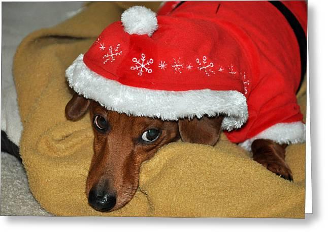Tuckered Santa Greeting Card by Teresa Blanton