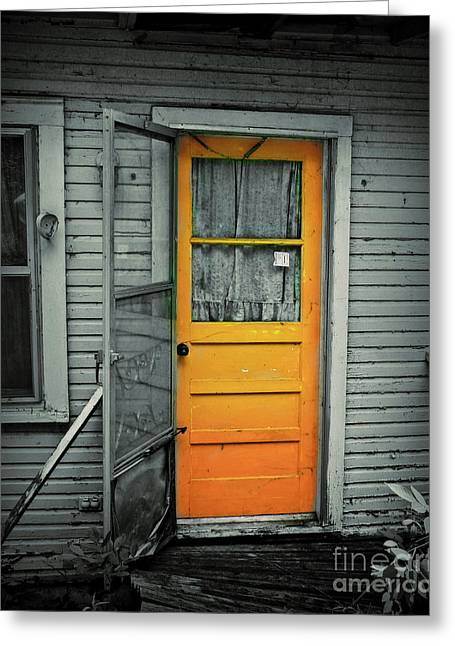 Screen Door Greeting Cards - Tuff Times Greeting Card by Perry Webster