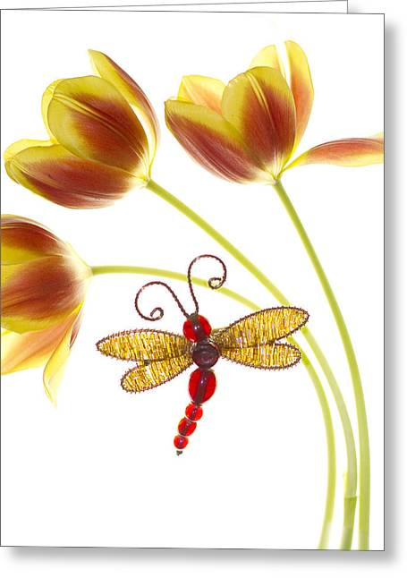 Dragonflies Greeting Cards - Tulip Dragonfly Greeting Card by Rebecca Cozart