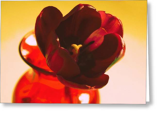 Northwest Flowers Greeting Cards - Tulip in the vase Greeting Card by Cathie Tyler