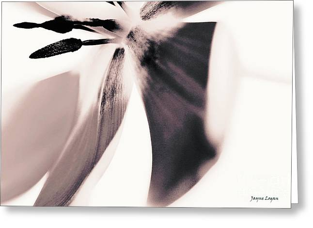 Artography Greeting Cards - Tulip Greeting Card by Jayne Logan Intveld