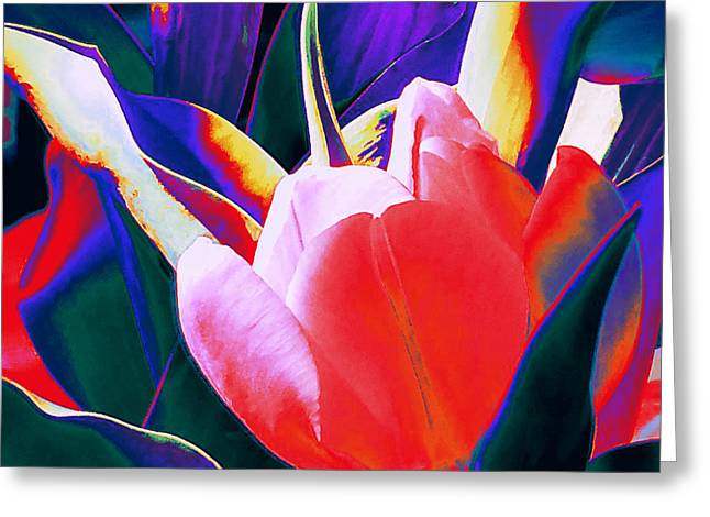 Tulip Kisses Abstract 1 Greeting Card by Kume Bryant