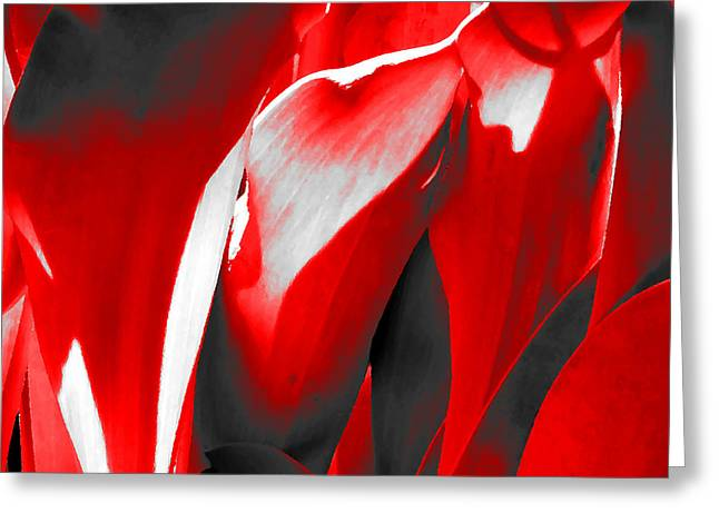 Tulip Kisses Abstract 2 Greeting Card by Kume Bryant