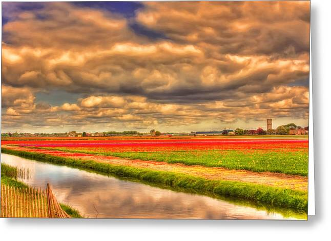 Reflections Of Sky In Water Greeting Cards - Tulip Season Greeting Card by Nadia Sanowar