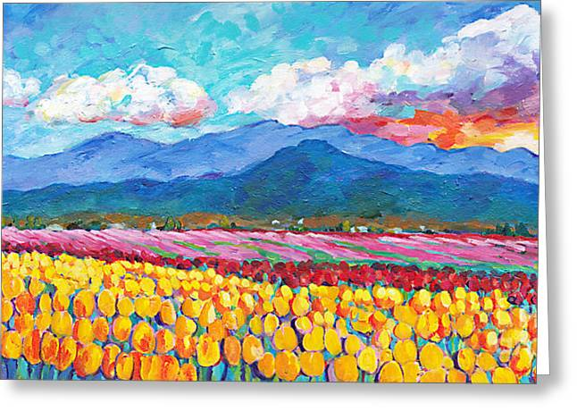 Farmers Field Greeting Cards - Tulip Sunrise Greeting Card by Peggy Johnson