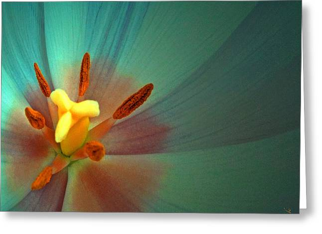 Converting Greeting Cards - Tulip Trends Greeting Card by Gwyn Newcombe