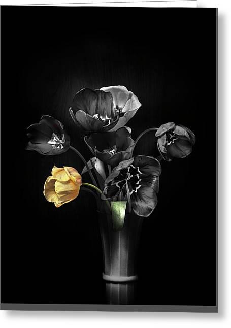 Tulips 2 Greeting Card by Ivan Vukelic