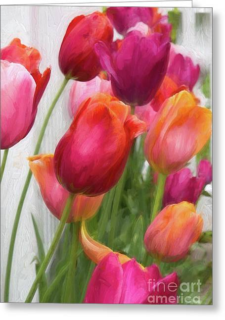 Tulips Greeting Card by A New Focus Photography