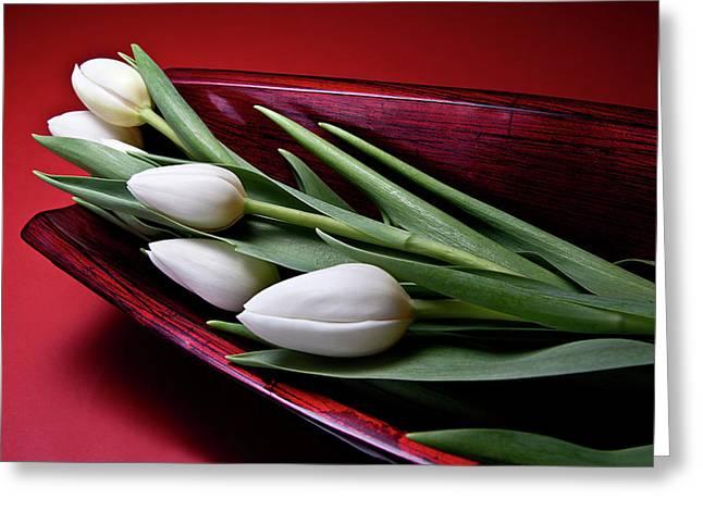 Tulips II Greeting Card by Tom Mc Nemar