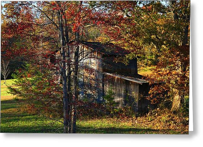 Sheds Greeting Cards - Tumbledown Barn Greeting Card by Kathryn Meyer