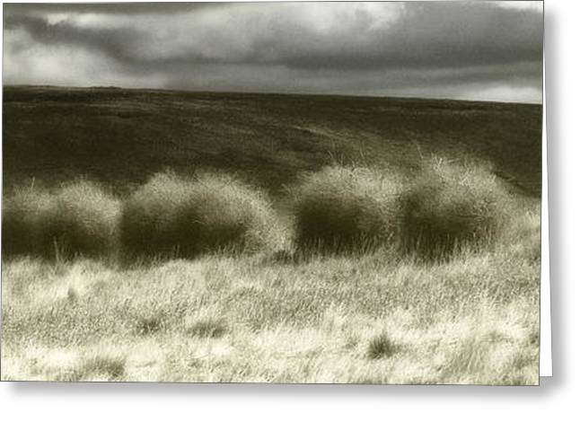 Enterprise Digital Art Greeting Cards - Tumbleweed Line Greeting Card by Adele Buttolph