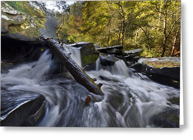 Best Sellers -  - Oak Creek Greeting Cards - Tumbling Greeting Card by Debra and Dave Vanderlaan