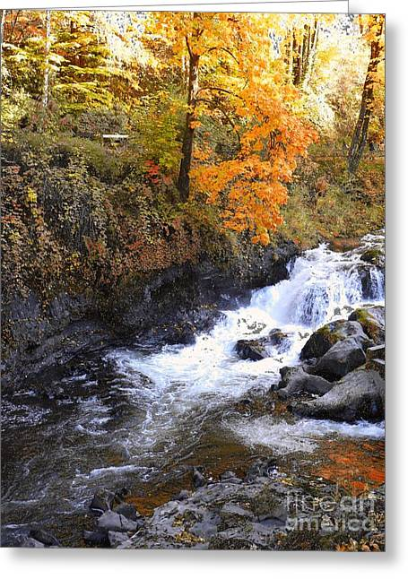 A River In Autumn Greeting Cards - Tumwater Falls in the Autumn Greeting Card by Terri Thompson