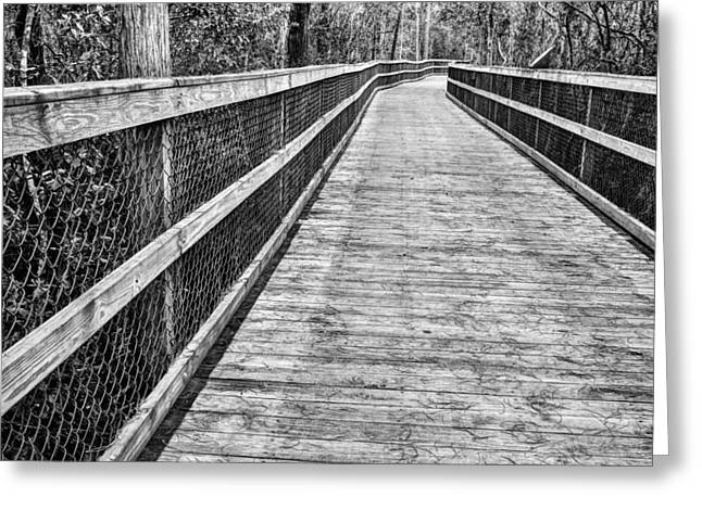 Florida Panhandle Greeting Cards - Turkey Creek Boardwalk Greeting Card by JC Findley