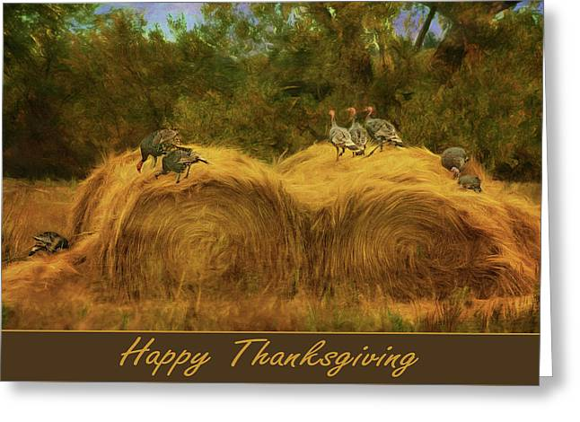 Turkeys In The Straw - Happy Thanksgiving Greeting Card by Nikolyn McDonald