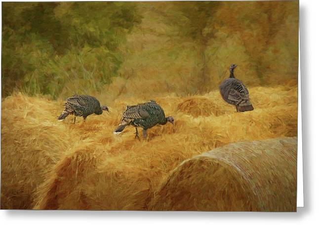 Turkeys In The Straw Greeting Card by Nikolyn McDonald