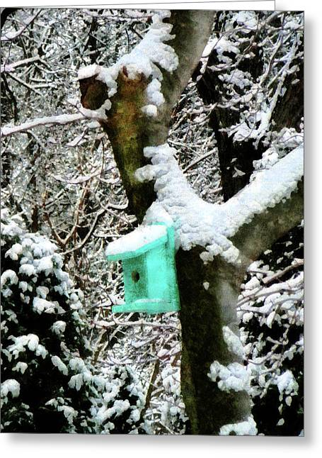 Turquoise Birdhouse In Winter Greeting Card by Susan Savad