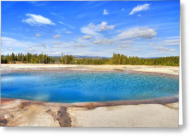 Turquoise Pool Greeting Card by Donna Kennedy