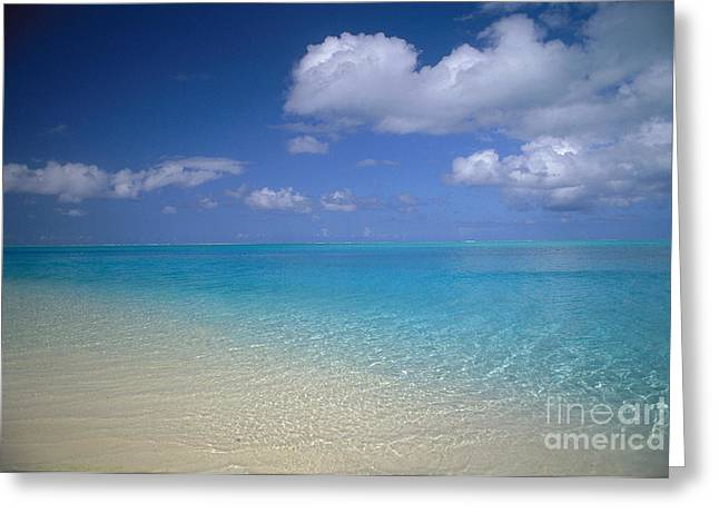 Bora Bora Greeting Cards - Turquoise Shoreline Greeting Card by Ron Dahlquist - Printscapes