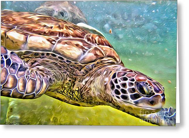 Turtle Dive Greeting Card by Carey Chen