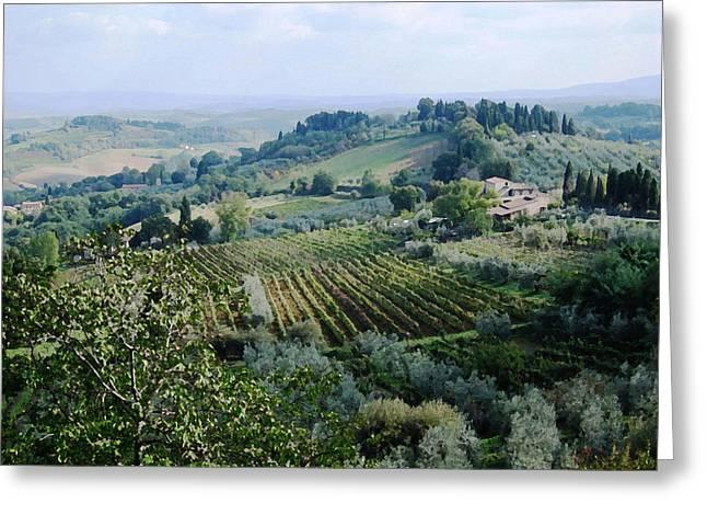 Tuscan Hills Mixed Media Greeting Cards - Tuscan Vines Greeting Card by Paul Barlo